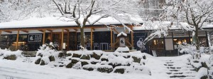 Snow Monkey Cafe