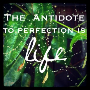 The-antidote-to-perfection-is-life
