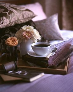 coffee and lavendar pillows
